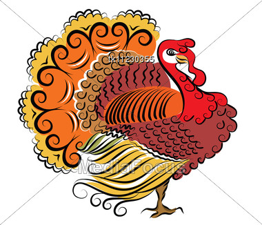 color turkeyvector thanksgiving day stock photo