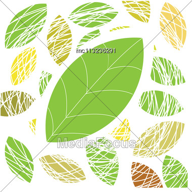 Colorful Autumn Leaves. Vector Illustration Stock Photo