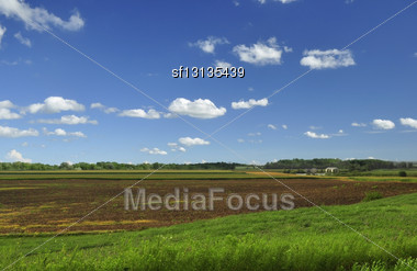 Country Summer Landscape With Cloudy Sky Stock Photo