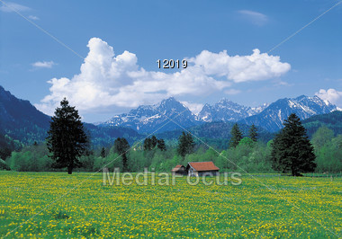 Countryside in Spring Stock Photo