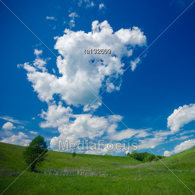 Countryside Landscape With Single Tree Stock Photo