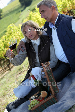 Couple Having Picnic In The Vineyard Stock Photo