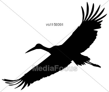 Crane Flying. Vector Silhouette Stock Photo