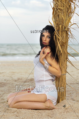 Cute Young Brunette Sitting Near The Palm Tree Stock Photo