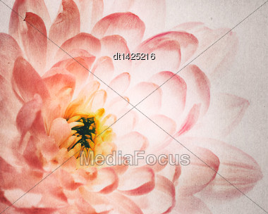 Dahlia Flower As Background With Added Old Cardboard Texture Stock Photo