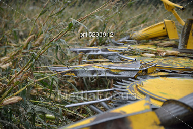 Detail Of Cutters On Combine Harvester As Farmers Harvest A Crop Of Maize For Silage On A Dairy Farm In Westland, New Zealand Stock Photo