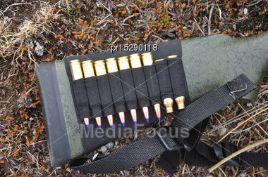 Detail Of Rifle Stock With Bullets And Spent Cartridges Stock Photo
