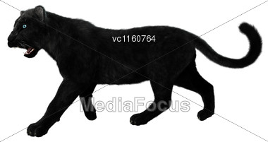 Digital Render Of A Big Cat Black Panther Isolated On White Background Stock Photo