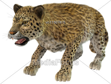 Digital Render Of A Big Cat Leopard Hunting Isolated On White Background Stock Photo