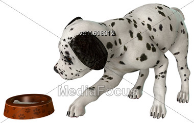 Digital Render Of A Dalmatian Puppy Isolated On White Background Stock Photo