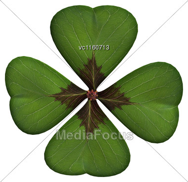 Digital Render Of A Lucky Clover Leaf Or Shamrock Isolated On White Background Stock Photo