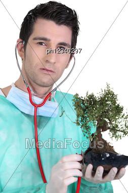 Doctor Using Stethoscope On Bonsai Stock Photo