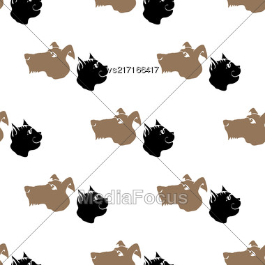 Dog Cat Seamless Animal Pattern. Pet Isolated On White Background Stock Photo