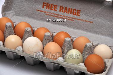 Dozen Fresh Farm Eggs On A Seamless Background Stock Photo