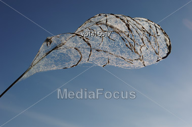 Drops Of Dew On A Spider Web In The Early Autumn Morning On Sky Background Stock Photo