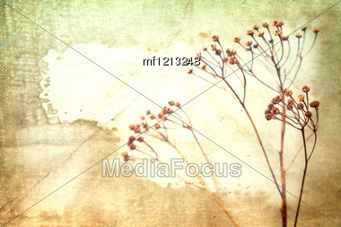 Dry Flower On Old Book Background. Vintage Style Stock Photo