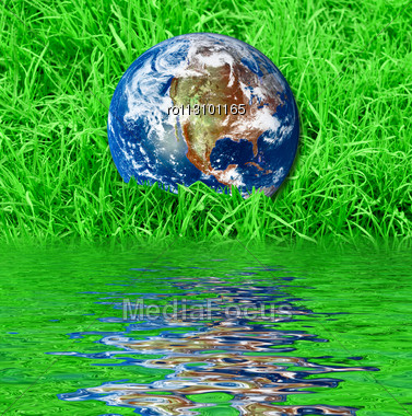 Earth At The Succulent Green Grass Background Stock Photo