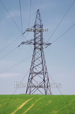 Electric Power Lines On The Green Field Stock Photo