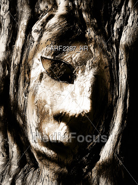 face in tree bark Stock Photo