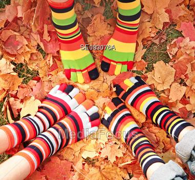 Fall Socks Stock Photo