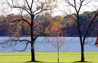 Fall Trees at the Lake Stock Photo