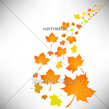 Falling Autumn Leaves Isolated On White Background Stock Photo