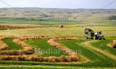 Farming Saskatchewan Bales And Baler In Field Swathe Stock Photo