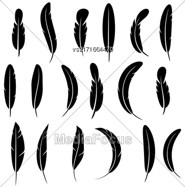 Feather Silhouette Collection Isolated On White Background Stock Photo
