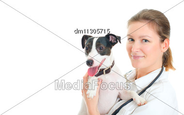 Female Veterinarian Holding Small Dog. Isolated On White Stock Photo