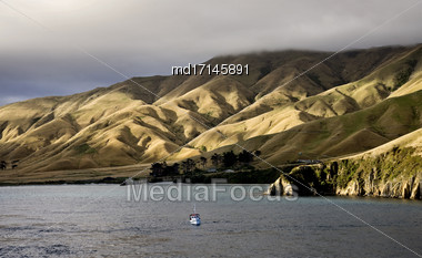 Ferry View Wellington New Zealand To South Island Stock Photo