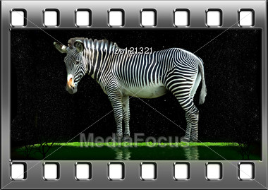 Filmstrip With The Image Of The Beautiful Nature Stock Photo