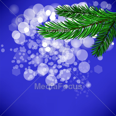 Fir Green Branch Isolated On Blue Background Stock Photo
