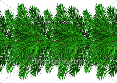 Fir Green Branches Isolated On White Background Stock Photo