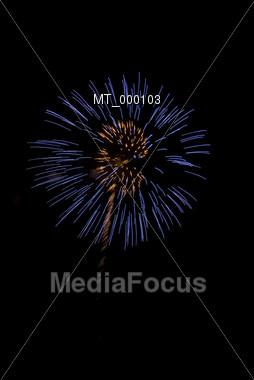 Fireworks Bloom Stock Photo