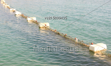 Floats In Water. Set Of Buoys. Sea Barrage At Sun Light Stock Photo