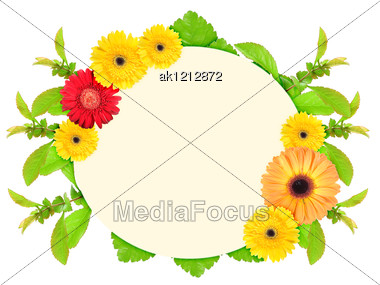 Floral Ellipse Frame With Motley Flowers And Green Leaf Nature Art Ornament Template For Your Design Close-up Studio Photography Stock Photo