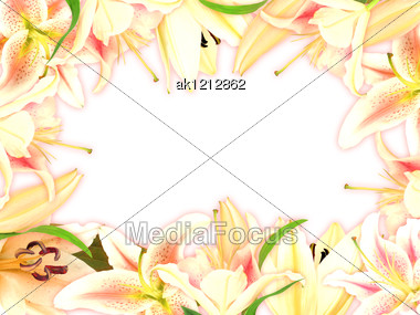 Floral Frame With Lily Flowers And Green Leaf On White Background. Nature Art Ornament Template For Your Design. Close-up. Studio Photography. Stock Photo