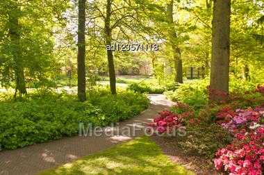 Flowers In Keukenhof Park, Netherlands Stock Photo