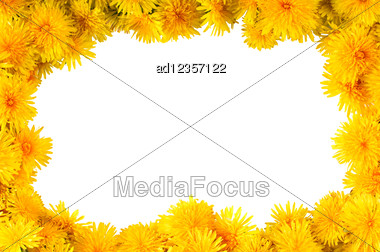 Frame Of Fresh Yellow Flowers Dandelions Stock Photo