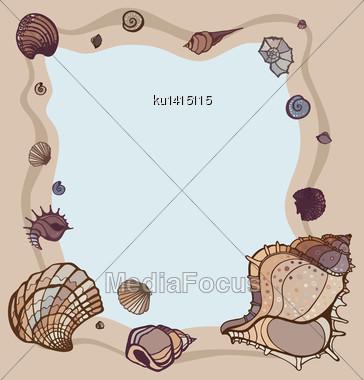 Frame Of Seashells. Summer Background. Vector Illustration Stock Photo