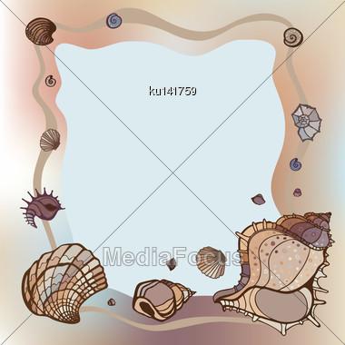 Frame Of Seashells. Summer Template. Vector Illustration Stock Photo