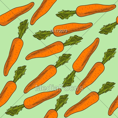 Fresh Seamless Pattern With Carrots, Vector Format Stock Photo