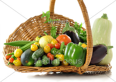 Fresh Vegetables From Garden Stock Photo