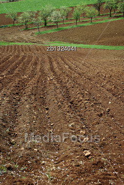 Furrows In The Field Of Arable Land Ready For Spring Planting Stock Photo