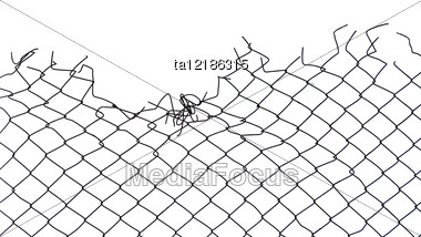 Gap Of Steel Netting Stock Photo