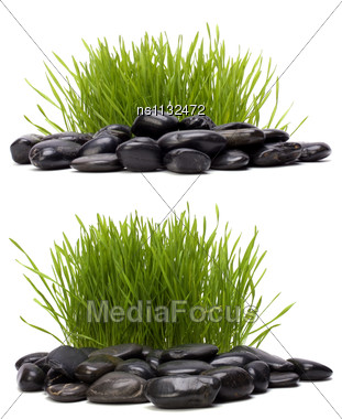 Grass And Stones Isolated On White Background Stock Photo