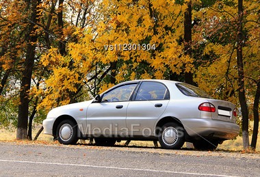Gray Car On Autumn Leaves Background Stock Photo