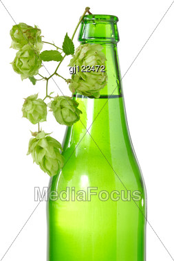 Green Bottle Of Beer And Branch Of Hop Stock Photo