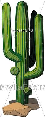 Green Cactus On A Rocky Texas Soil Stock Photo
