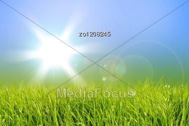Green Field And Sun Sky Stock Photo
